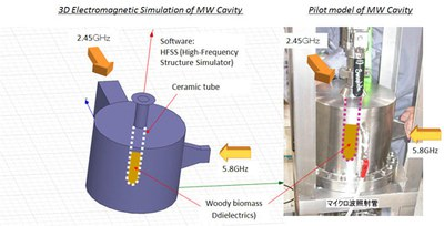 MW Irradiation System for Woody Biomass